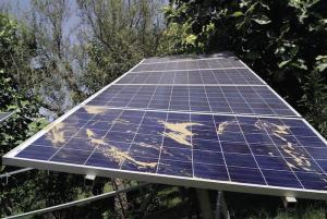 solar panel degradation