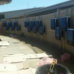 Amaroo Inverter Wall