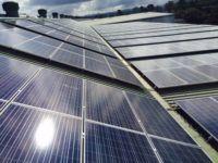 Brisbane Markets solar installation