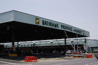 Brisbane Markets Rocklea