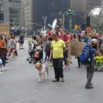 Climate March dogs children ninja turtles