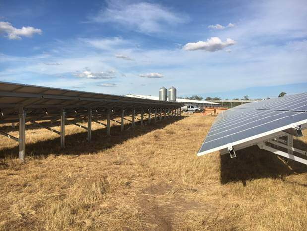 Doug Hall Poultry Installs 100kw Solar System At Ellerslie