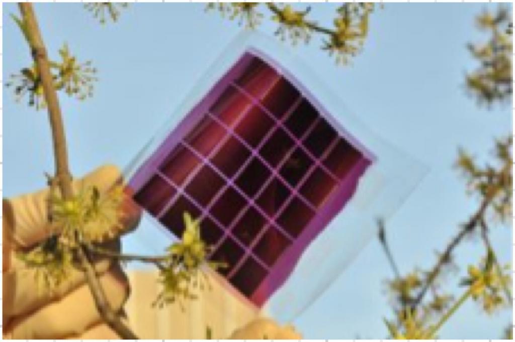 EU organic solar cells 2