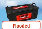 Giant Power flooded lead acid
