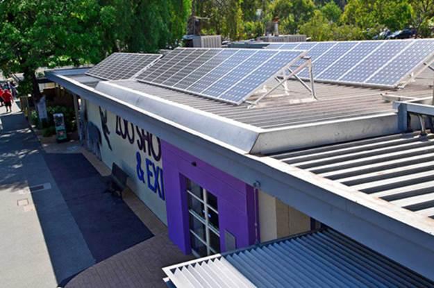 Melbourne Zoo Solar Installation 3