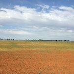 Nyngan solar farm site