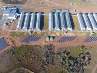 Pace Farms Solar Project