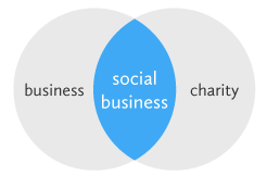 Pollinate Energy - Social Business