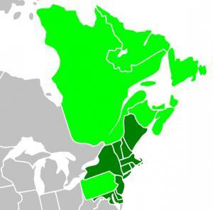 Regional Greenhouse Gas Initiative Map - Partners and Observers