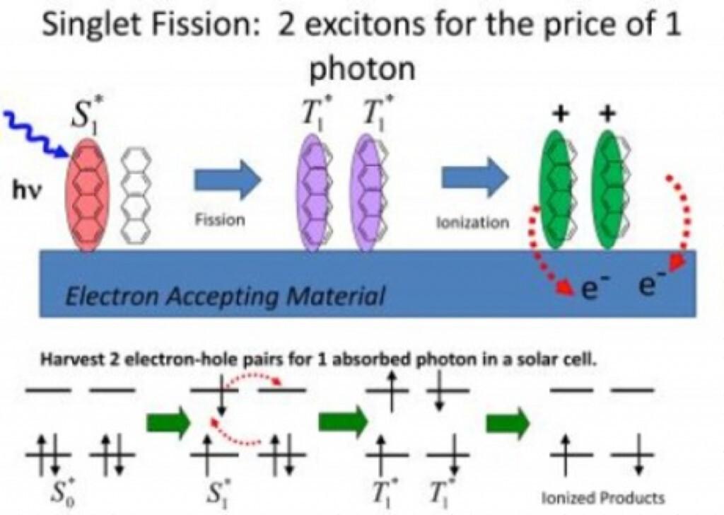 Singlet Fission