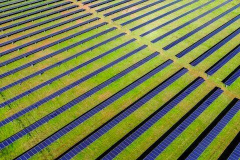 Solar Farm Green Field