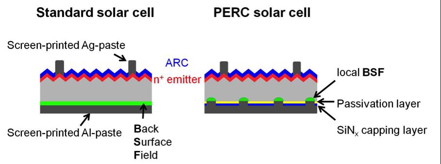 Standard solar cell vs PERC cell