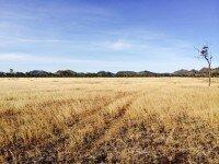 Whitsunday Solar Farm