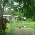 Remote Power System for a hut in Vanuatu