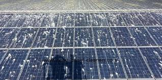 Solar Panel Cleaning Why How Amp How Often Solar Choice