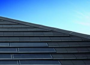 bristle roofing