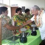 Fiji's Solar Grandmothers