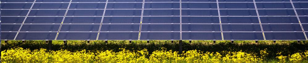 Solar banner image