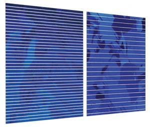 Standard silicon cells vs cells using Pluto technology